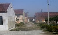 江苏南通如皋东部经济开发区2000平米标准厂房出租/占地20亩