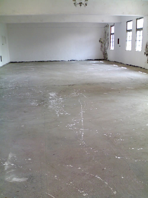 松江区沪松公路泗泾段3000平方米单层多层标准厂房出租